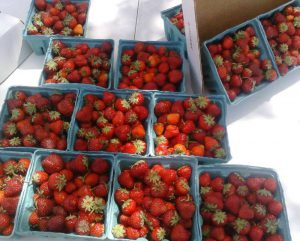 Butcher-Creek-Produce-strawberries