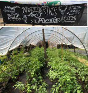 North-River-Micro-Farm